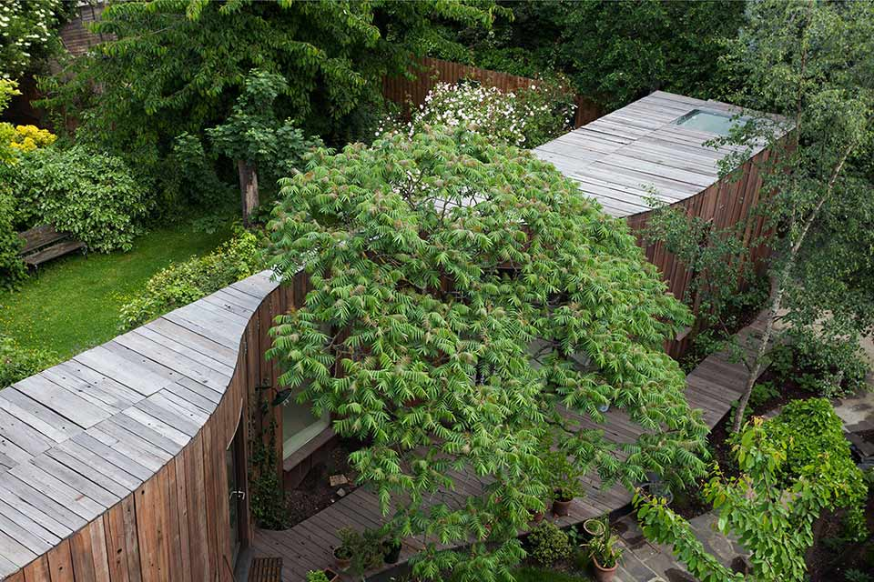 Tree House / 6a Architects第6张图片