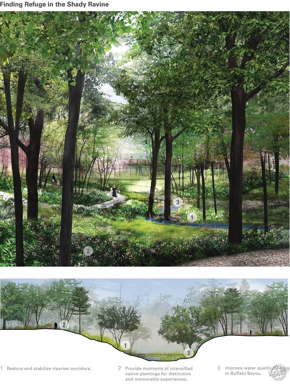 Devastation to Resilience: The Houston Arboretum & Nature Center第11张图片