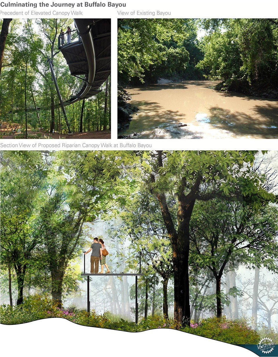 Devastation to Resilience: The Houston Arboretum & Nature Center第14张图片