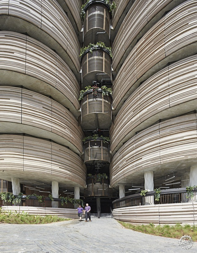 南洋理工大学学习中心 LEARNING HUB BY HEATHERWICK STUDIO第8张图片