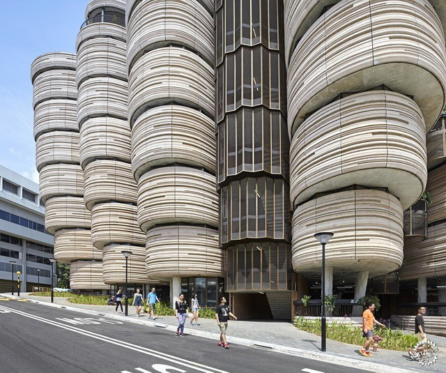 南洋理工大学学习中心 LEARNING HUB BY HEATHERWICK STUDIO第9张图片