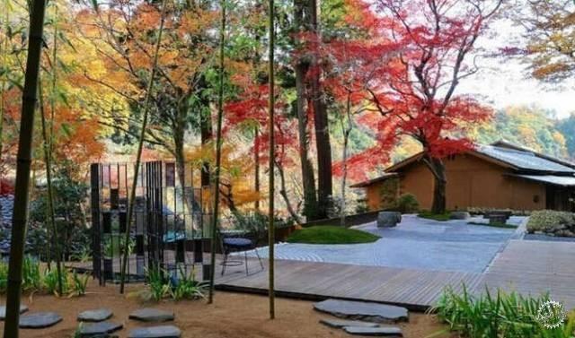 园林景观木质铺装设计