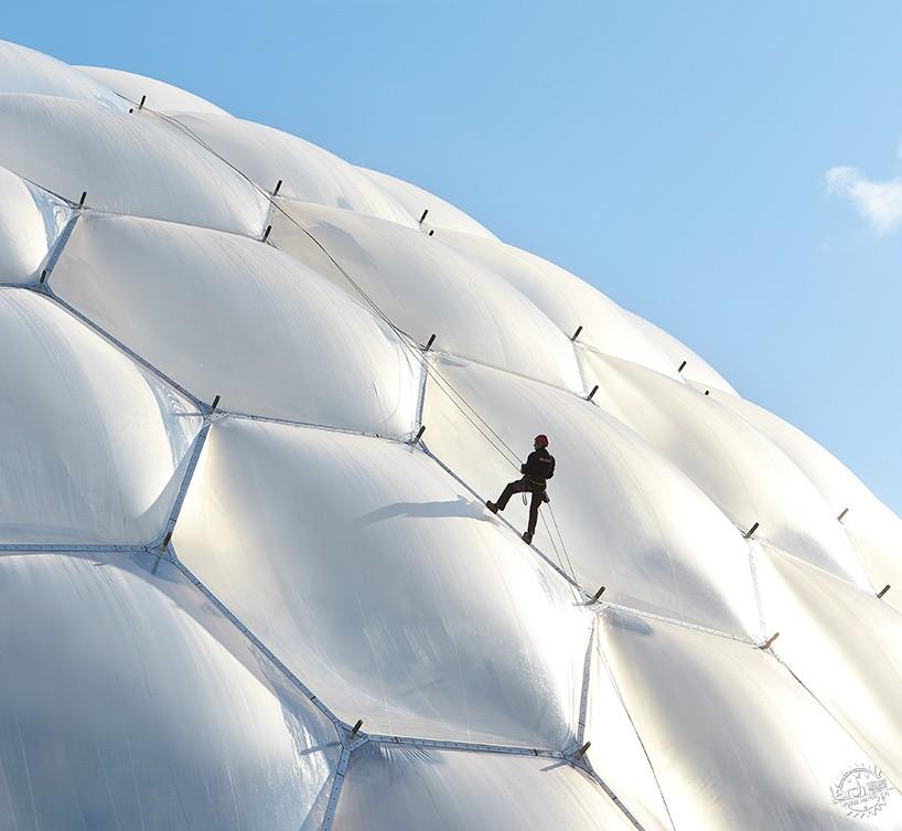 景观结构分析泡泡图