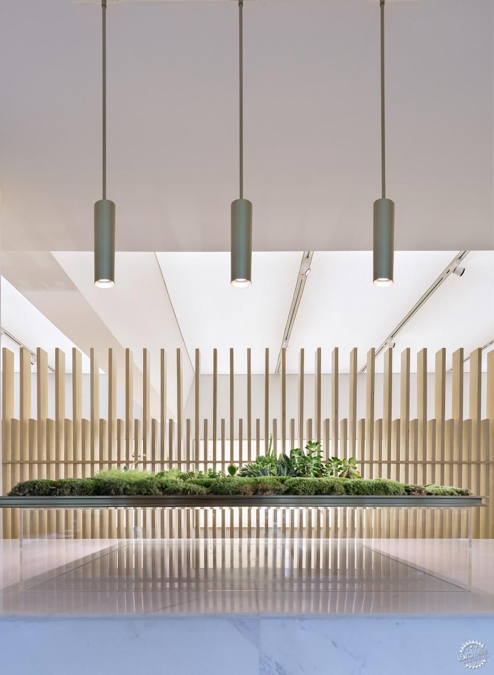 more design office - 室内设计师 / 建筑设计师助理 / 软装设计师