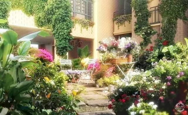掌握这些,你也能成为自己花园设计师