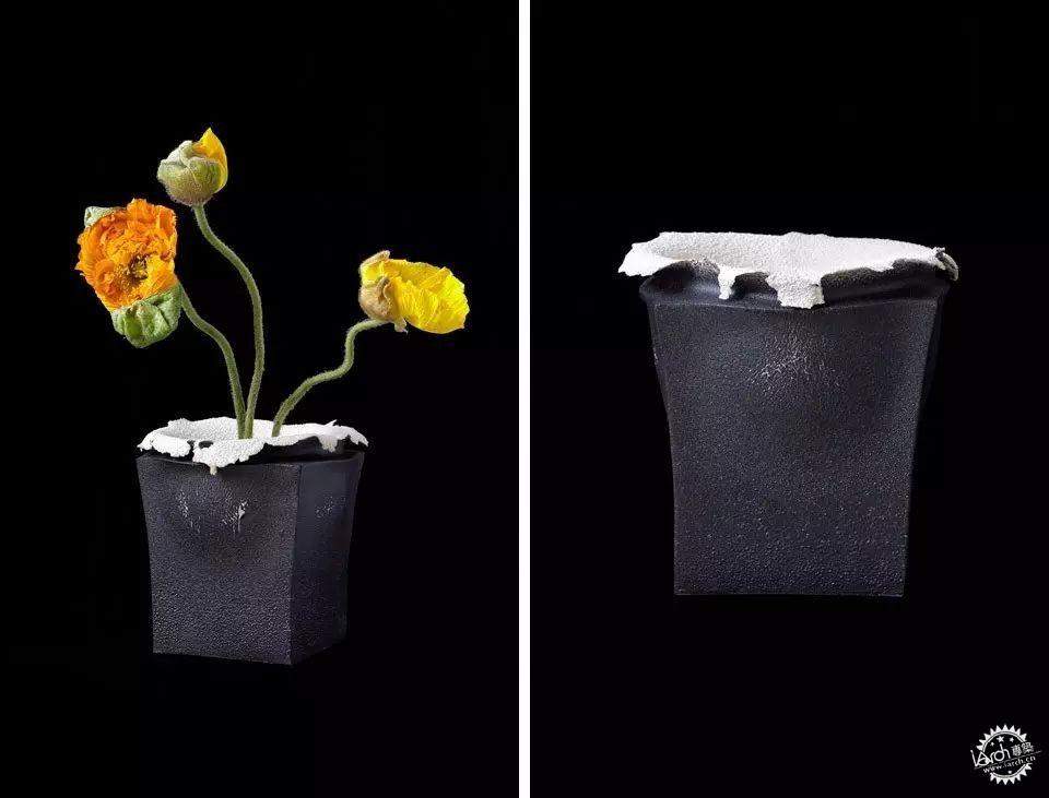 你没见过的花瓶设计第21张图片