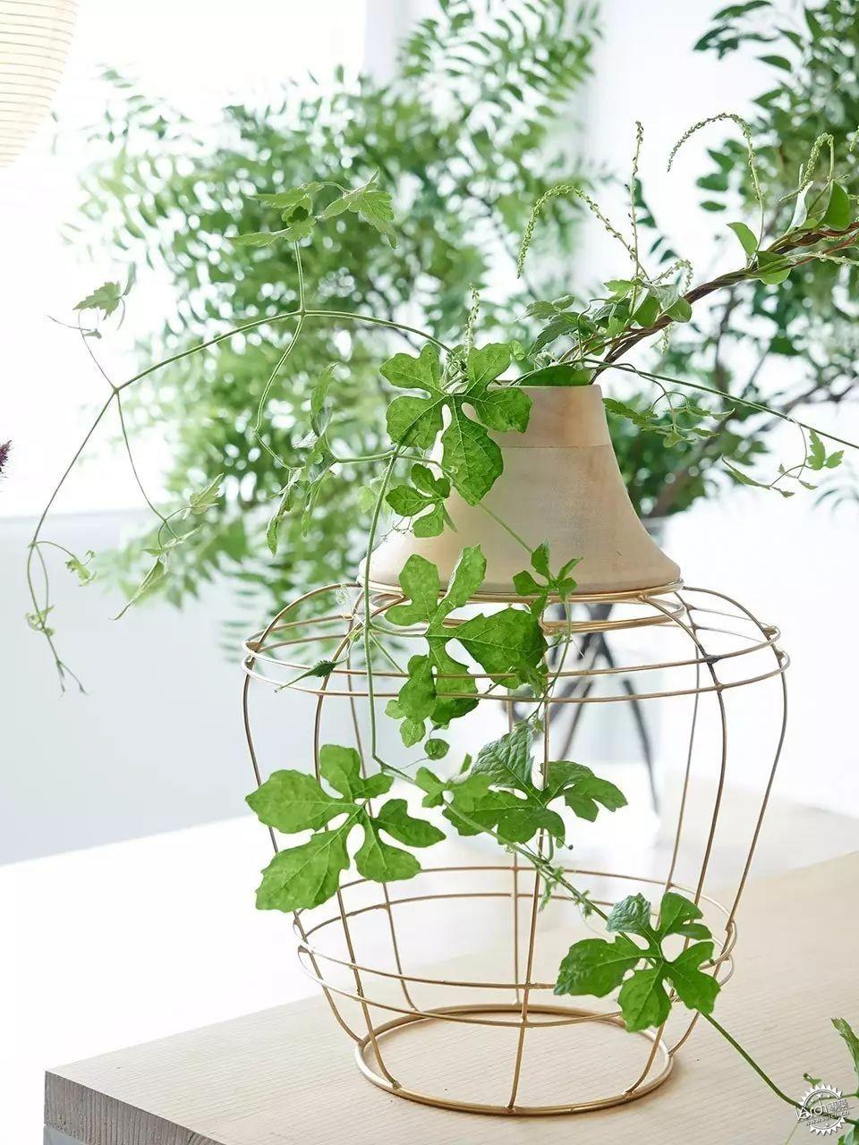 你没见过的花瓶设计第47张图片