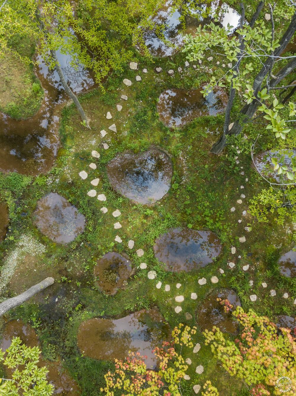 设计与自然的完美结合丨日本水上花园第3张图片