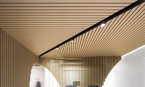 Care Implant Dentistry / Pedra Silva Architects